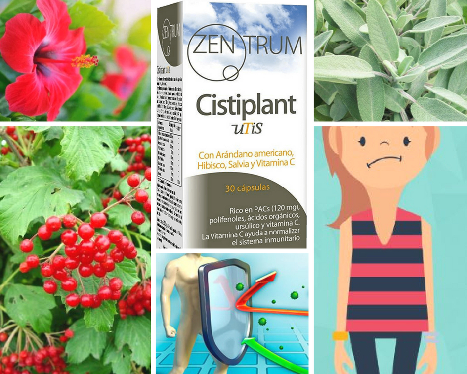 beneficios cistiplant